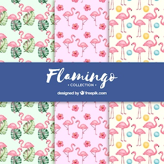 식물을 가진 플라밍고 패턴의 집합
