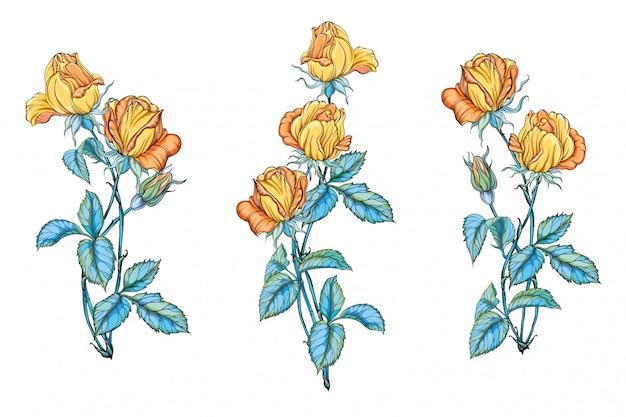 黄色いバラの花の花束のセットです。黄色いバラ。