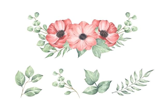 Набор цветочной ветви, изолированные на белом фоне