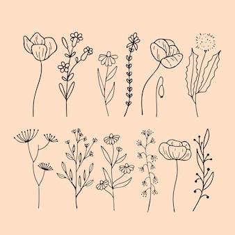 Набор цветочных элементов ботанический лист декоративные рисованной элементы