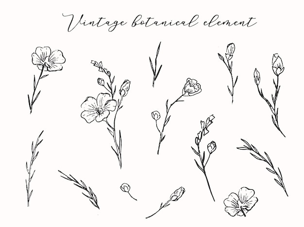 花の要素のセットは、野生の花の枝ベクトルイラストを残します