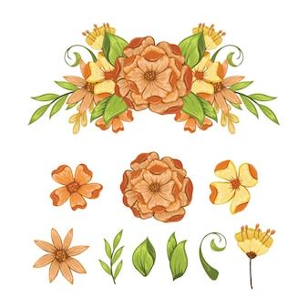 花の要素のセット