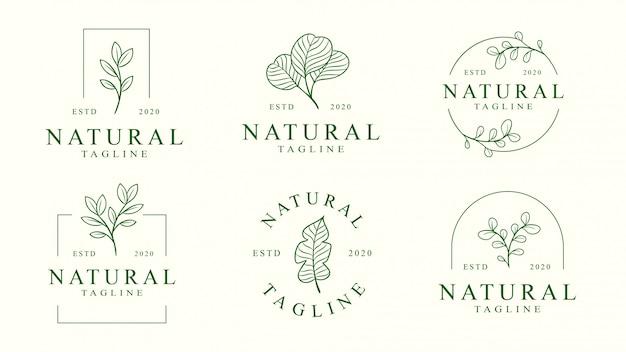 Набор цветочного логотипа шаблона