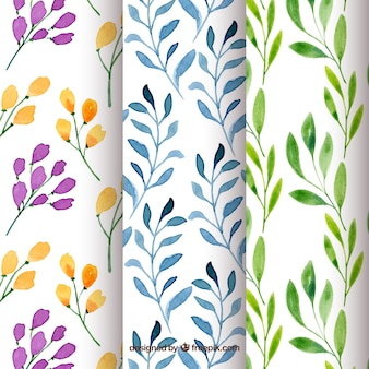Set of floral patterns in watercolor style