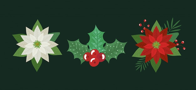 花のセットと葉のクリスマスの装飾