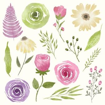 水彩イラストで描かれた花と植物のセット