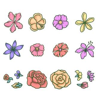 花のセット、デジタルカラー、イラストで描かれた線を手