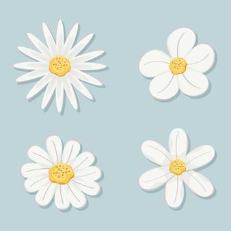 흰색 잎과 꽃의 세트
