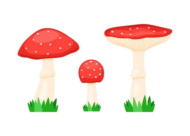 Набор мухоморов, мухомора muscaria. красный ядовитый гриб.