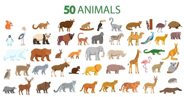 森の動物のクマ、キツネ、オオカミ、ヘラジカ、鹿、ウサギ、ビーバー、ハリネズミ、リス、イノシシのセット。子供のためのフラット漫画イラスト。