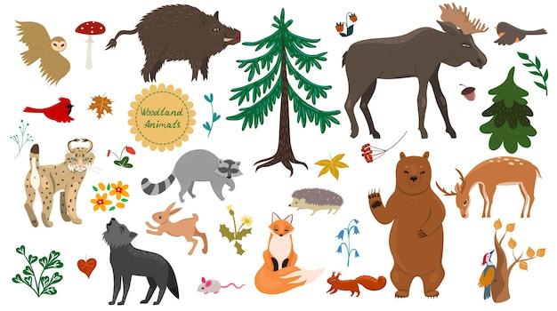 Набор лесных животных, птиц и растений, изолированных на белом фоне.