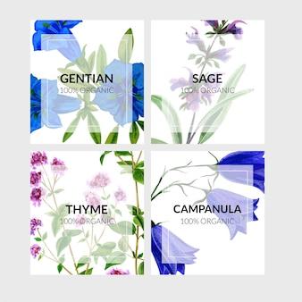 Набор из четырех карточек с полевыми цветами