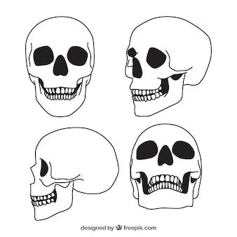 4手描きの頭蓋骨のセット