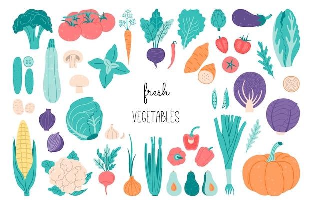 신선한 야채, 건강한 채식 음식, 평면 낙서 스타일, 감자, 양배추, 옥수수, 샐러드, 토마토, 양파, 아보카도의 손으로 그린 재료 세트.