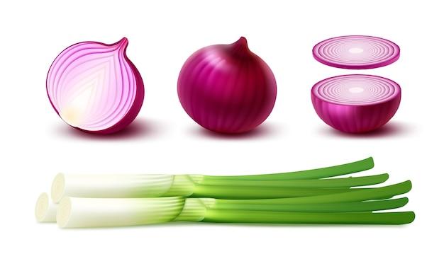 Набор свежих целых и нарезанных луковиц красного лука с зеленым луком крупным планом на белом фоне