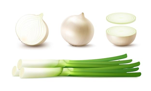 Набор свежих цельных и нарезанных луковиц белого лука с зеленым луком крупным планом на белом фоне