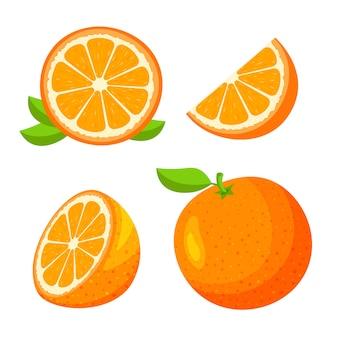 신선한 전체, 절반, 오렌지 과일 흰색 배경에 고립의 조각을 잘라의 집합입니다. 귤과 나뭇잎. 트렌디 한 만화 스타일의 채식 음식 아이콘. 건강 식품 개념.