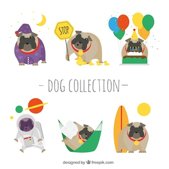 Set of funny dogs with elements