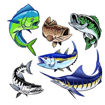 Набор наборов gamefish bundle collection