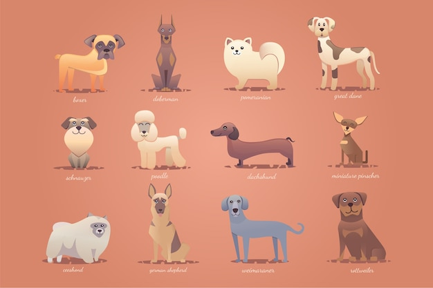 ドイツの犬のセット、かわいい漫画イラスト形式