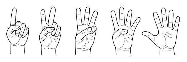 1から5まで数えるジェスチャーの指のセット