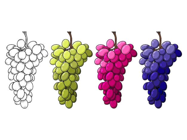 Набор винограда, силуэт и красочный. рисованные объекты. стиль каракули. изолированные на белом.