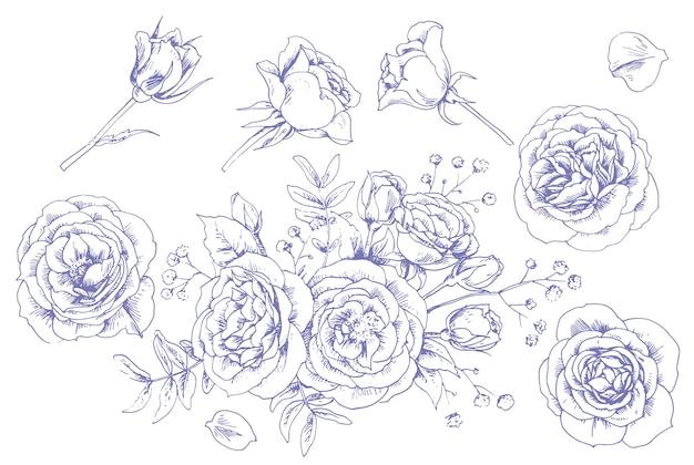 グラフィックのバラのセット