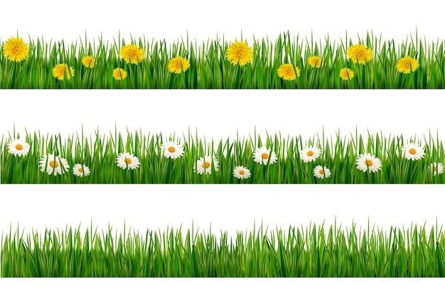 Набор зеленой травы с одуванчиками и ромашками