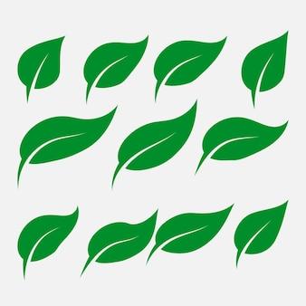 緑の葉のアイコンのセット