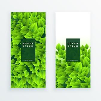 Set of green leaves banner
