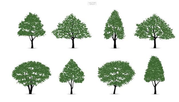 緑の木のセット。