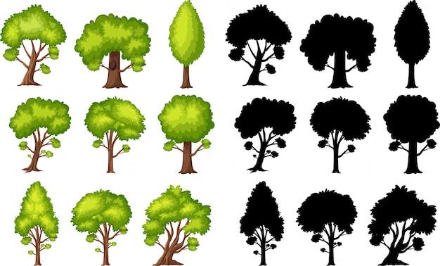 다른 모양과 흰색 배경에 sillhouette에 녹색 나무의 집합