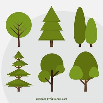 フラットデザインの緑の木々のセット