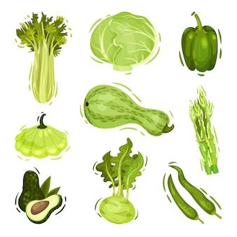 흰색 절연 녹색 야채 세트