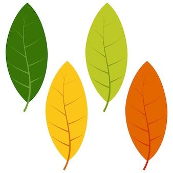 흰색 배경에 고립 된 녹색, 노란색 및 빨간색 잎의 집합입니다. 가 잎의 벡터 일러스트 레이 션.