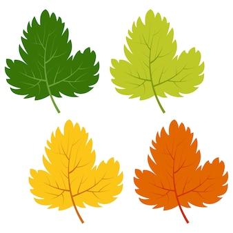 Набор зеленых, желтых и красных листьев, изолированных на белом фоне. векторная иллюстрация осенних листьев.
