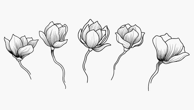 손으로 그리는 꽃의 집합입니다.