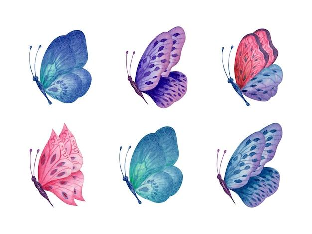 手描きの美しい水彩蝶セットのセット