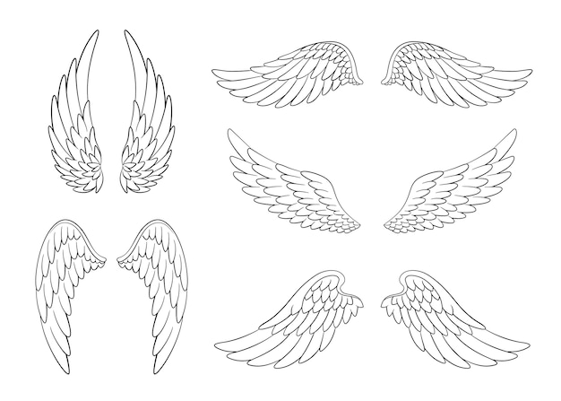열린 위치에서 다른 모양의 손으로 그린 새 또는 천사 날개의 집합입니다.