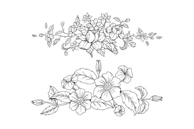 손으로 그린 식물 요소 장식 벡터의 집합