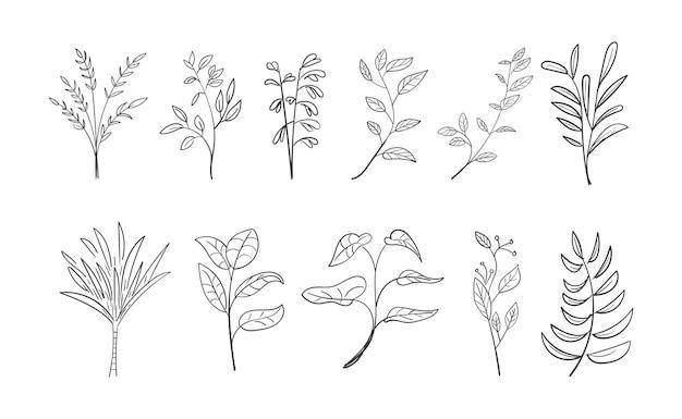 손으로 그린 식물 잎 낙서 야생화 세트