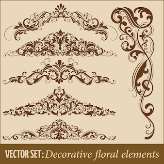 Set of hand drawn decorative vector floral elements for design. Page decoration element.