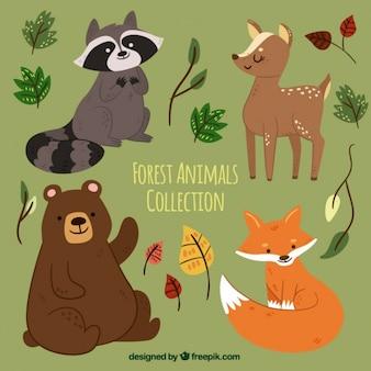 Набор рисованной лесных животных с листьями