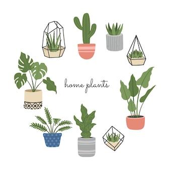 手描きの観葉植物、スカンジナビアスタイルの花、さまざまなポット、屋内、家の装飾のセット。