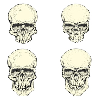 손으로 그린 인간의 두개골의 집합입니다. 엠블럼, 포스터, 티셔츠 또는 의류 인쇄를위한 디자인 요소.