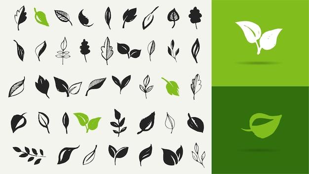 手描きの葉、緑の葉、葉と植物のスケッチと落書き、緑の葉のベクトルコレクションのセット