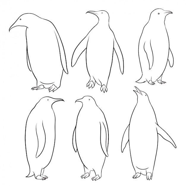 手描きペンギンのセット