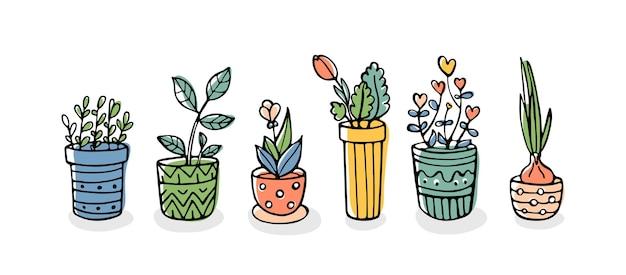 흰색 배경에 고립 된 냄비에 손으로 그린 식물 세트
