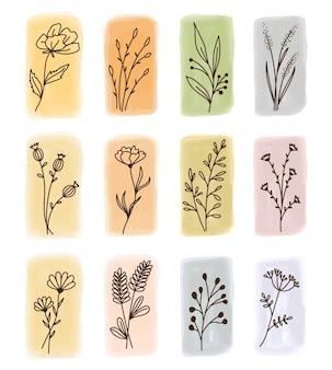 손으로 그린 벡터 꽃 요소(잎, 꽃, 가지) 집합입니다. 수채화 얼룩에 낙서 스타일의 식물 삽화. 청첩장, 연하장, 따옴표, 블로그에 적합