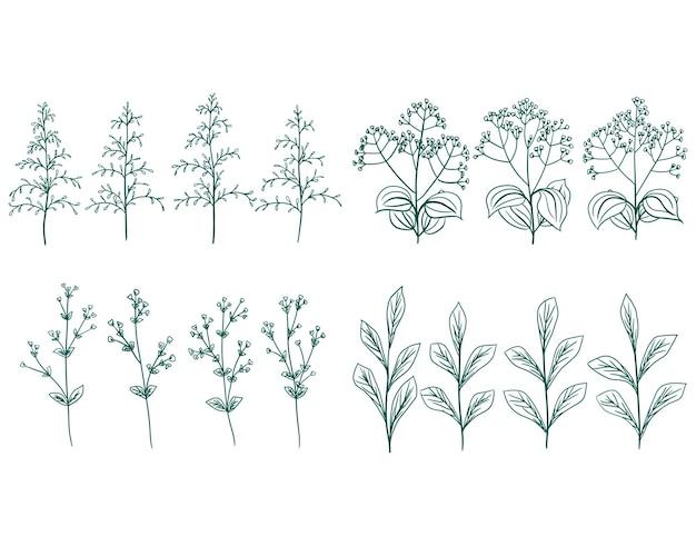 手描きベクトル緑の装飾的な植物の花と葉の枝のセット